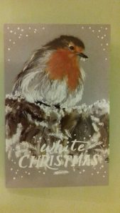 art class, near me, merseyside, members picture for christmas card, robin